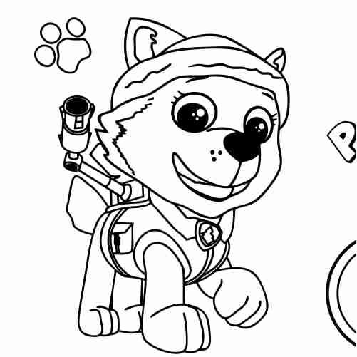 Dibujos de patrulla canina para colorear everest
