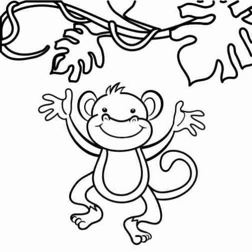 Dibujos de Mono saltarin para colorear