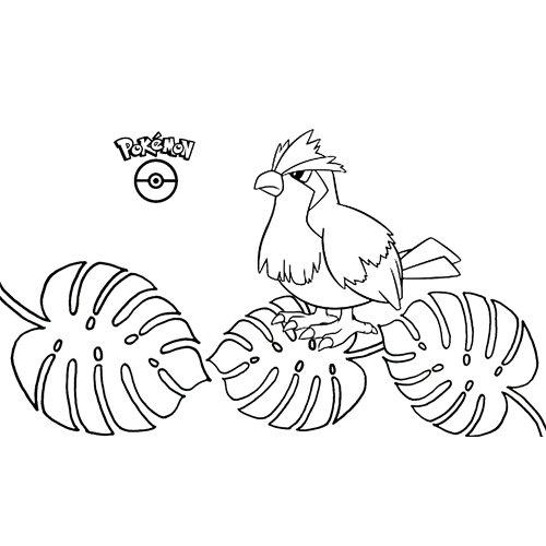pokemon pidgey para colorear